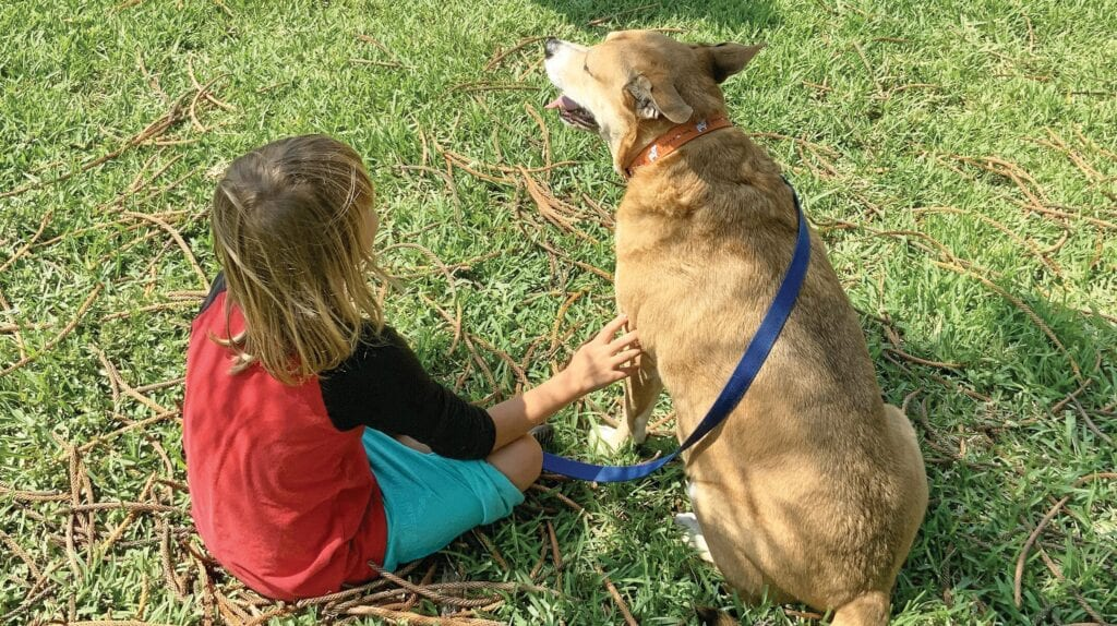 A young Youth Haven resident enjoys the company of Houston, one of the animal-assisted therapy dogs on the campus. This therapy program is especially helpful for new residents who may not be inclined to trust adults but who will trust a nonjudgmental dog. COURTESY YOUTH HAVEN