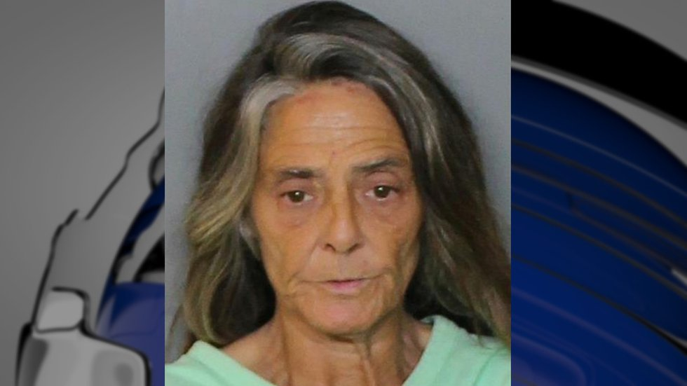 Woman from Punta Gorda accused of trying to set fire to her home with people in it