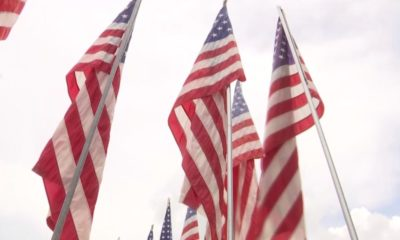 American flags at a Charlotte County park. (Credit: WINK News)