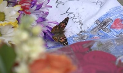 North Port community releasing butterflies to honor Gabby Petito