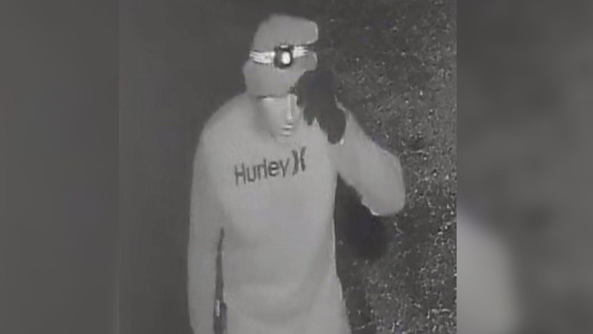 Cape Coral police are looking for arcade burglars