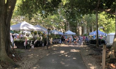 Edison and Ford Winter Estates are hosting the annual Fall Garden Festival November 20-21 | News, sports, jobs